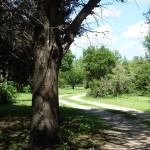 parque01-04