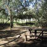 parque01-12